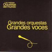 Play & Download Las Mejores Orquestas del Mundo Vol.18: Grandes Voces by Various Artists | Napster