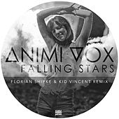 Falling Stars (Remixes) von Animi Vox