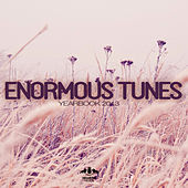 Enormous Tunes - Yearbook 2013 by Various Artists