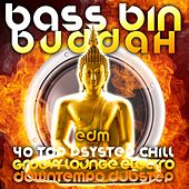 Play & Download Bass Bin Buddah (40 Top Psystep, Groovy Lounge, Electro Chill, Downtempo Dubstep) by Various Artists | Napster
