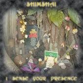 I Sense Your Presence (Remastered) by Shimshai
