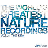 The World's Greatest Nature Recordings, Vol. 4: The Sea by Global Journey