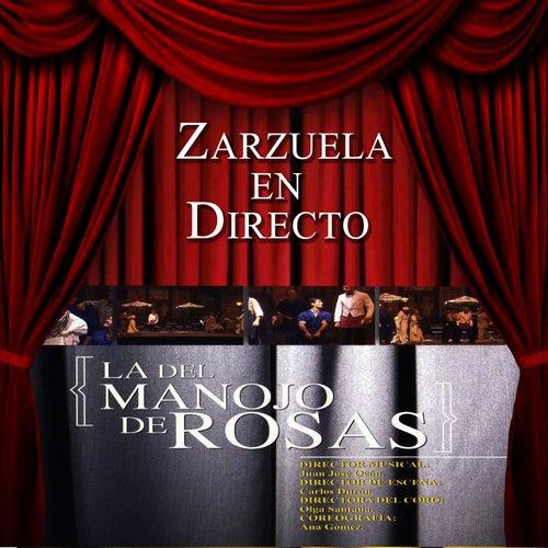 Play & Download Zarzuela en Directo: La del Manojo de Rosas by Coro del Festival de Ópera de las Palmas de Gran Canaria | Napster