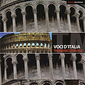 Play & Download Voci d'Italia - The Musicotheque (Original Recording) by Various Artists | Napster