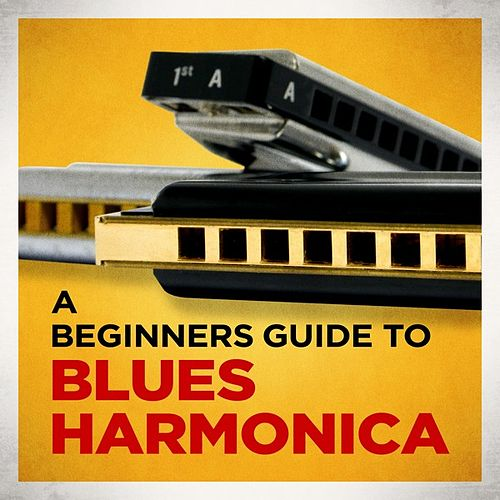 Play & Download A Beginners Guide to Blues Harmonica by Various Artists | Napster