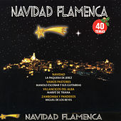 Navidad Flamenca by Various Artists
