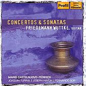 Concertos & Sonatas by Various Artists