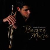 Besame Mucho by Dominick Farinacci