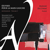 Play & Download Œuvres pour la main gauche - Anthologie, Vol. 3 by Maxime Zecchini | Napster