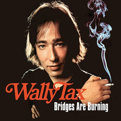 Bridges Are Burning by Wally Tax