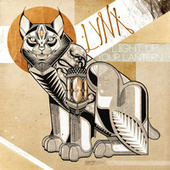 Play & Download Light Up Your Lantern by Lynx | Napster