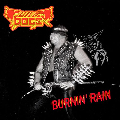 Burnin' Rain by Wild Dogs