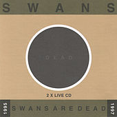 Play & Download Swans Are Dead: Live '95-'97 by Swans | Napster
