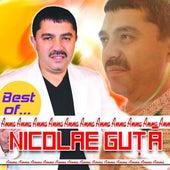 Best of Nicolae Guta by Nicolae Guta