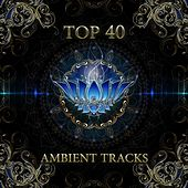 Top 40 Ambient Tracks by Various Artists