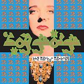 The Martyr Mantras by Boy George