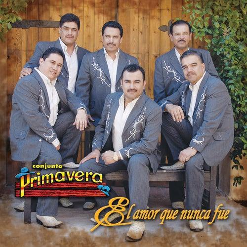 Play & Download El Amor Que Nunca Fue by Conjunto Primavera | Napster