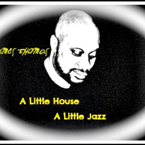 A Little House a Little Jazz by James 'Son' Thomas