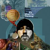 It's What I'm Thinking by Badly Drawn Boy