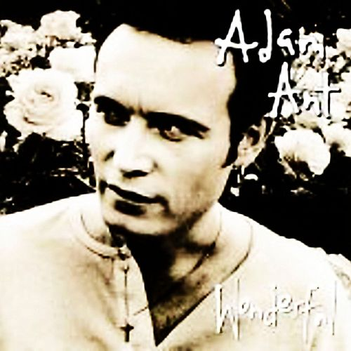 Extra Wonderful by Adam Ant