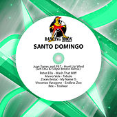 Santo Domingo by Various Artists