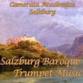 Purcell - Vivaldi - Corelli - Haydn - Torelli: Salzburg Baroque Trumpet Music von Various Artists