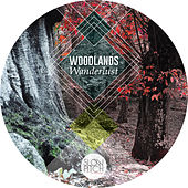 Play & Download Woodlands by Wanderlust | Napster