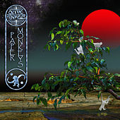 Play & Download Paper Monkeys by Ozric Tentacles | Napster
