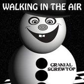 Walking in the Air by Cranial Screwtop
