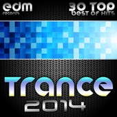 Trance 2014 (30 Top Electronic Dance Hits, Acid, Psy, Hard, Goa, Prog, Fullon Masters) by Various Artists