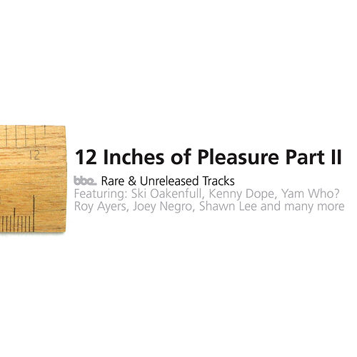 Play & Download 12' Of Pleasure II by Various Artists | Napster