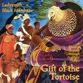Play & Download Gift Of The Tortoise: A Musical Journey Through Southern Africa by Ladysmith Black Mambazo | Napster