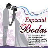 Especial Bodas by Various Artists