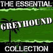 Greyhound: The Essential Collection by Greyhound