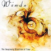 The Imaginary Direction Of Time by Winds