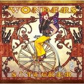 Wonders by S.J. Tucker