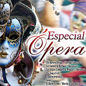 Especial Opera von Various Artists