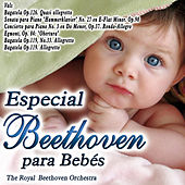 Especial Beethoven para Bebes by The Royal Beethoven Orchestra