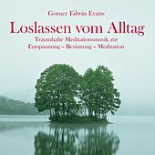 Play & Download Loslassen vom Alltag: Wundervolle Meditationsmusik by Gomer Edwin Evans | Napster