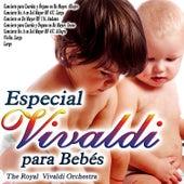 Especial Vivaldi para Bebes de The Royal Vivaldi Orchestra