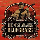 The Most Amazing Bluegrass von Various Artists