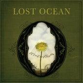 Lost Ocean by Lost Ocean