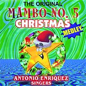 The Original Mambo No.5 Christmas Medley by Various Artists