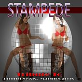 Stampede: Tribute to Dimitri Vegas, Martin Garrix by Various Artists