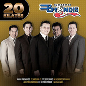 Play & Download 20 Kilates by Grupo Bryndis | Napster