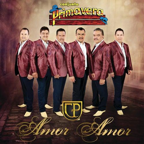 Play & Download Amor Amor by Conjunto Primavera   Napster