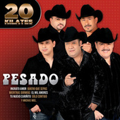Play & Download 20 Kilates by Pesado | Napster
