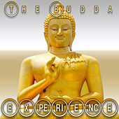The Budda Experience by Various Artists