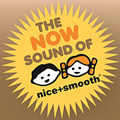 The Now Sound of Nice+Smooth - The Very Best in Electronic Grooves by Various Artists