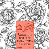 Grandes Boleros para Toda una Vida by Various Artists